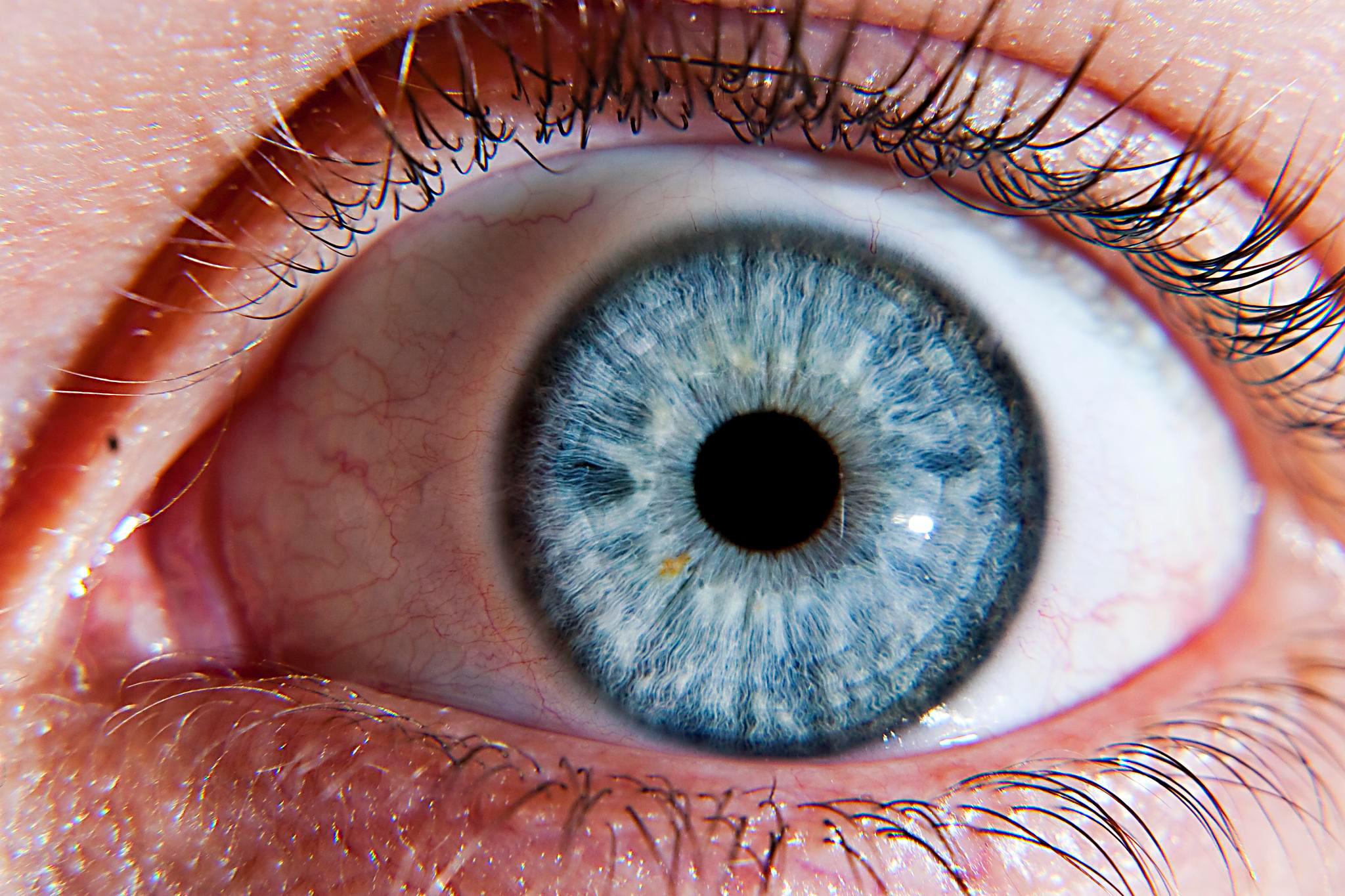 بدن انسان در تنگنا بینایی