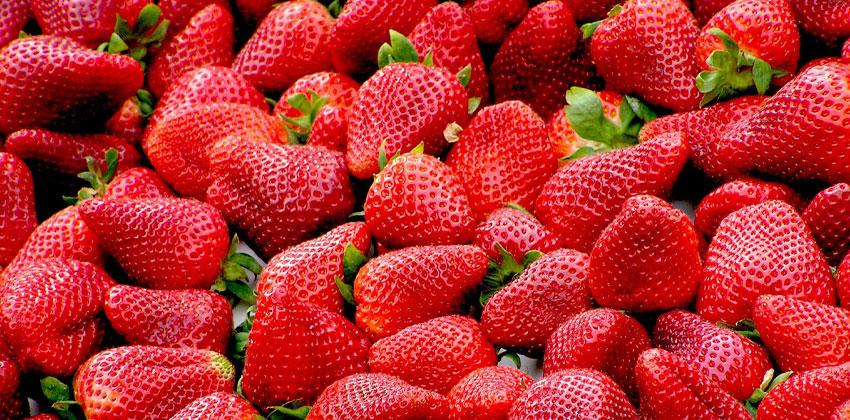 میوه به شما احساس سیری می دهد