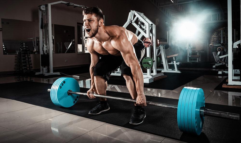 عضلات سرینی