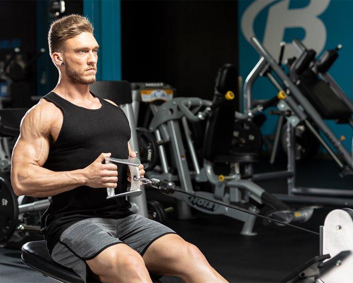 عضلات پشت