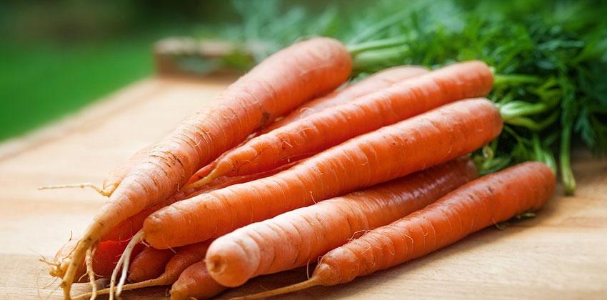 هویج سرشار از فیبر است