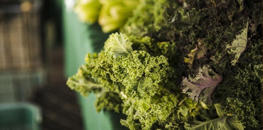 سبزیجات چربی ندارند