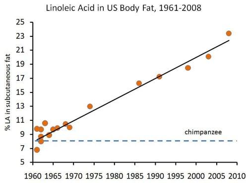 نمودار لینولنیک اسید در بدن